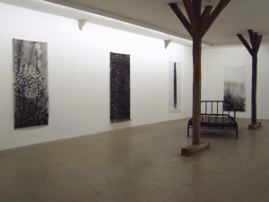Exhibition view, M3 Kunsthall, Berlin 2004 Drawings, spray paint on transparent paper, each 110x240 cm(sculpture from Priska Streits)